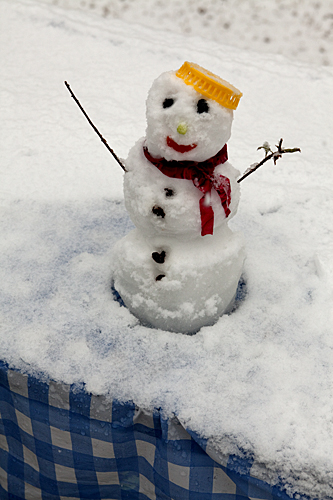 Snowman in Alabama